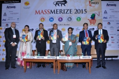 Massmerize 2015 -12