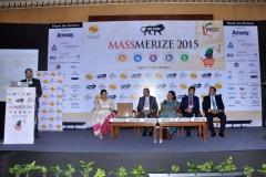 Massmerize 2015 -9
